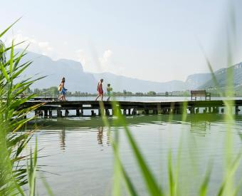 Explore the lake of Caldaro!